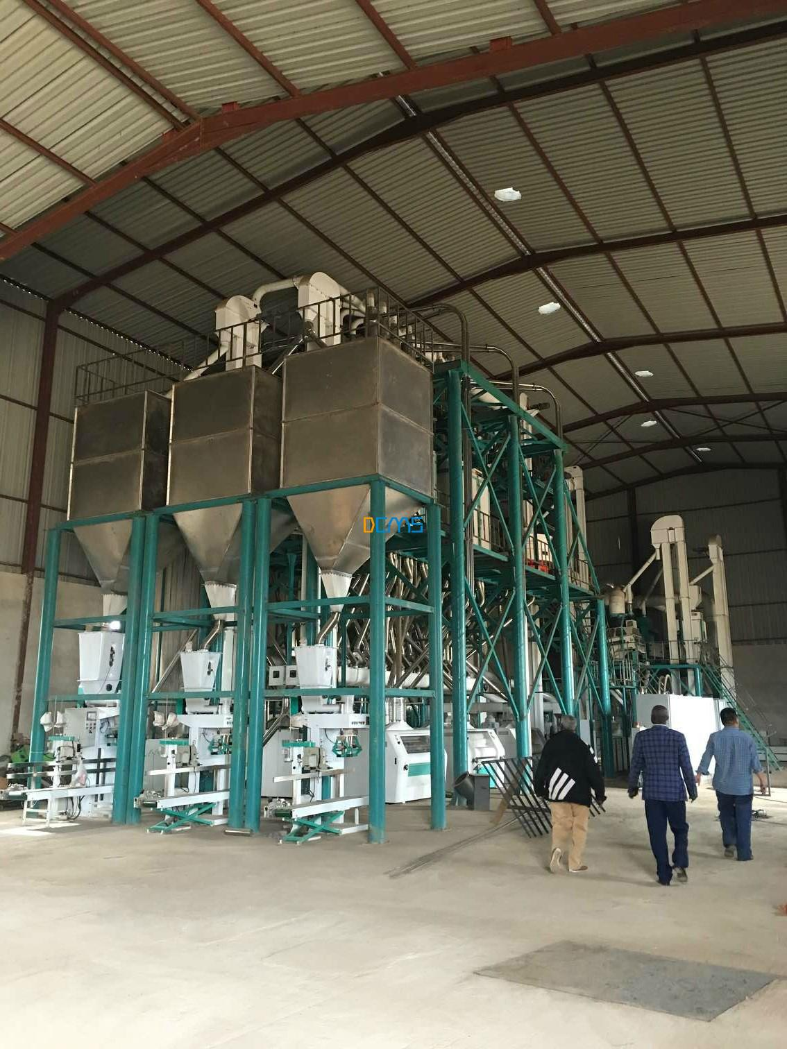 Zambia 250t/24h maize mill project